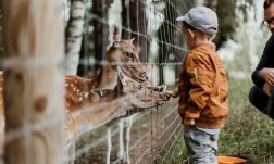 londons best farms and zoos for kids