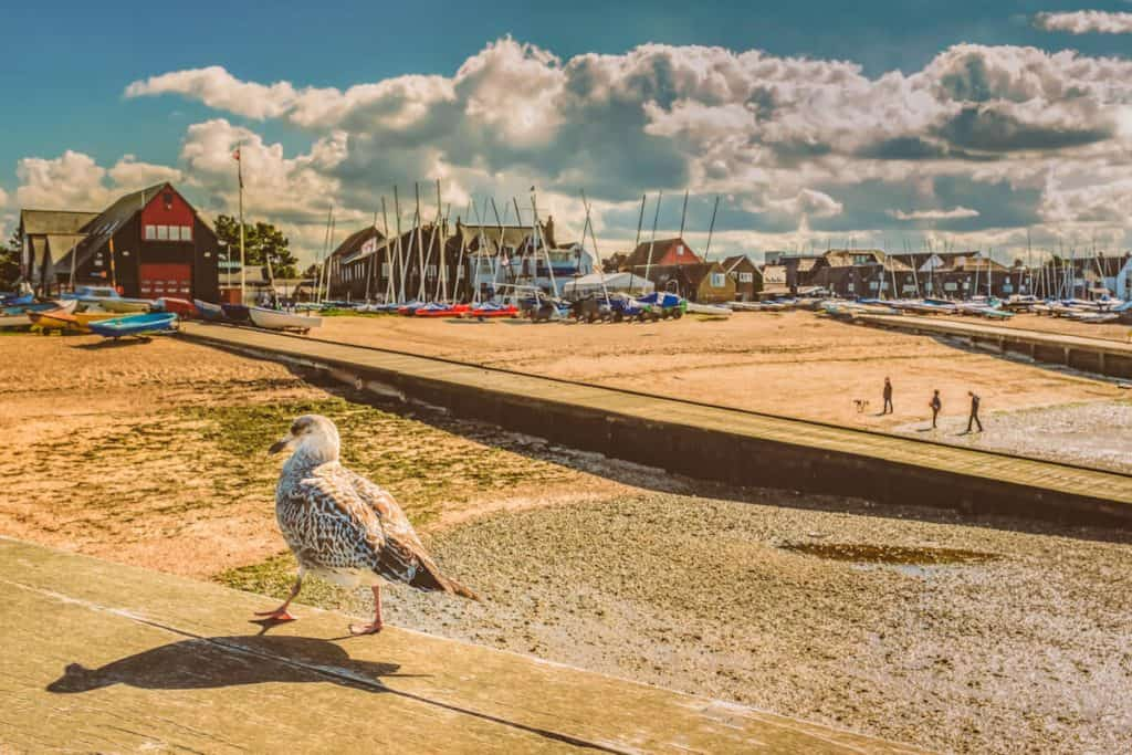 Whitstable beach front